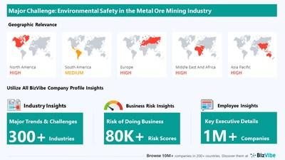 Snapshot of key challenge impacting BizVibe's metal ore mining industry group.