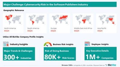Snapshot of key challenge impacting BizVibe's software publishers industry group.