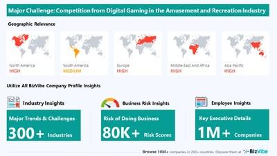 Snapshot of key challenge impacting BizVibe's amusement and recreation industry group.